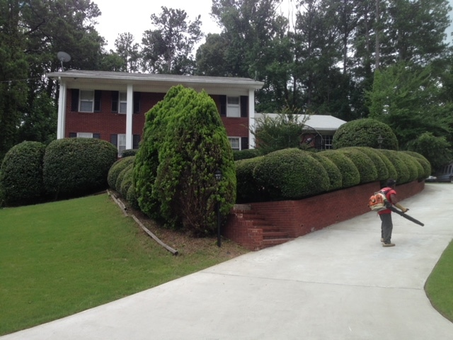 Peachtree City Lawn Services