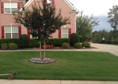 Lawn Treatment Service GA