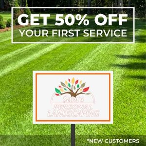50 percent off first service